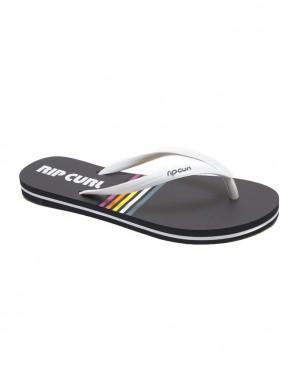 SURF O RAMA