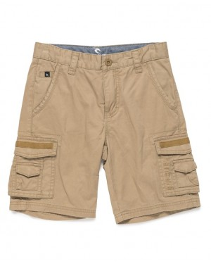 CARGO WALKSHORT - LEAD GRAY